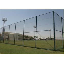 齐齐哈尔运动场护栏、航拓丝网、绿色运动场护栏图片