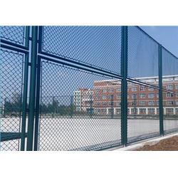 铁丝浸塑体育场护网-北京体育场护网-航拓丝网图片
