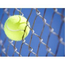 航拓丝网(在线咨询)、体育场围网、体育场围网图片