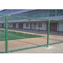 双晟丝网生产厂家(图)、学校围墙网多钱一米、学校围墙网图片