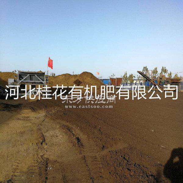 营养土|河北营养土|桂花有机肥(多图)图片