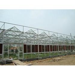 多利达重工(图)、日光温室大棚、南阳温室大棚图片