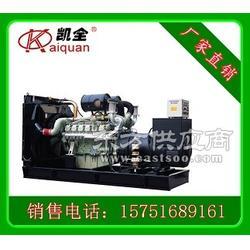 300KW韩国大宇柴油发电机组 全国联保图片