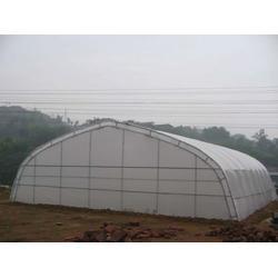 开封日光温室-新农温室(优质商家)日光温室造价图片