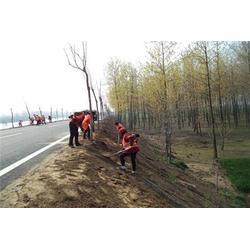 公路工程施工、莱芜公路工程、通达公路工程(查看)图片