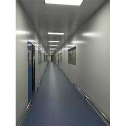 胶体金GMP车间设计_诊断试剂车间(在线咨询)_茂名诊断试剂图片