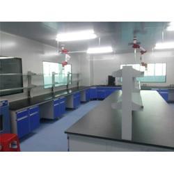 体外诊断试剂车间GMP规划,汇龙净化,体外诊断试剂车间图片