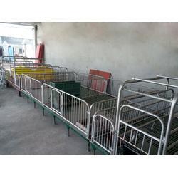 开封母猪产床,明宇养殖,优质双体母猪产床图片