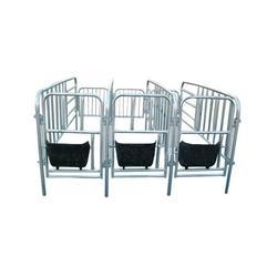 母猪限位栏、明宇养殖、母猪限位栏图片