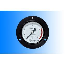 江西压力表-长城仪表生产厂家-隔膜压力表图片