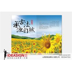 山西画册设计 美容画册设计-画册设计图片