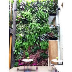 植物墙销售,铭秀立体(在线咨询),植物墙图片