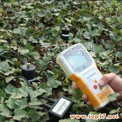 土壤水分温度测试仪分析土壤水分对西瓜品质的影响图片