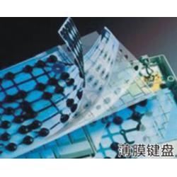 薄膜开关|薄膜开关厂|康立科技(多图)图片