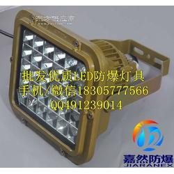 电厂LED防爆应急灯40W/化工厂LED壁挂式20w图片