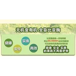 僡康工贸品质保证(图),比亚酶采购,比亚酶图片