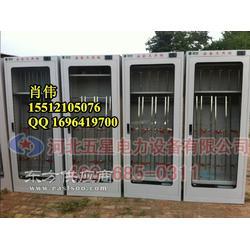 电力安全工器具柜 厂家_恒温除湿安全工具柜图片