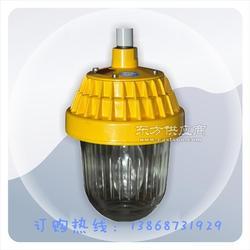海洋王BPC8720防爆平台灯配用光源150W图片