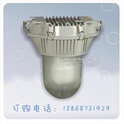 电厂照明NFC9180防眩泛光灯图片