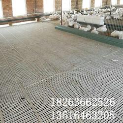 如何选鹅用网床 鸡鸭鹅专用漏粪板 塑料家禽漏粪地板图片