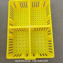 运鸡雏的塑料箱 鸡雏车专用四格箱 塑料鸡苗箱生产厂家图片
