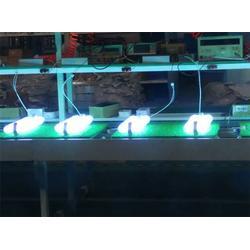 高臭氧杀菌灯管厂家-星普xpes(在线咨询)高臭氧杀菌灯管图片