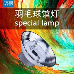 广东星普,专用羽毛球灯,林甸县羽毛球灯图片