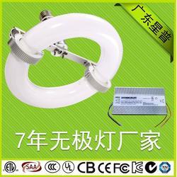 广东星普(图),高低频无极灯工作原理,高低频无极灯图片