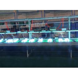 广东星普、供应臭氧除异味消毒灯、臭氧除异味消毒灯图片