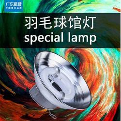 led羽毛球场灯设计方案,广东星普,led羽毛球场灯图片