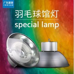 羽毛球馆灯企业灯光设计、广东星普(在线咨询)、羽毛球馆灯企业图片