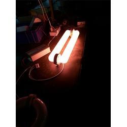 广东星普(图)|佛山植物灯哪家好|佛山植物灯图片
