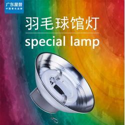 广东星普,羽毛球场灯管,羽毛球场灯管图片
