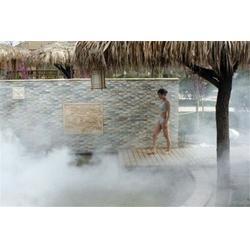 增城园林造雾,森林园林造雾设备,铭田喷雾造雾系统图片