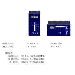 光柱表XMG5000RS485、百特仪表、光柱表图片