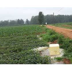 铸铁出水栓企业-铸铁出水栓-九州通给水设备图片