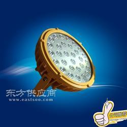宝临BLE90-A LED防爆灯II型图片