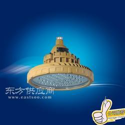 宝临电器BLE90-B LED防爆灯II型图片