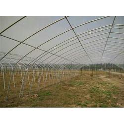 哈尔滨大棚钢管(刘女士)温室大棚钢管图片