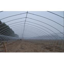 宜兴通钢铁大棚钢管(多图),温室大棚钢管支架图片