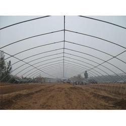 蒙城镀锌大棚钢管,天津大棚钢管(在线咨询)图片