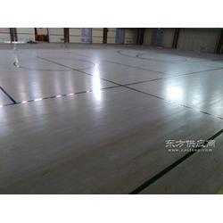 运动木地板畅森品牌排销量优先的运动木地板图片