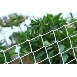 泰安佳瑞建材(图)、PP过滤塑料网、山东塑料网图片