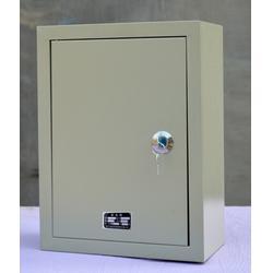 pz30配电箱-通力变压器(在线咨询)配电箱批发