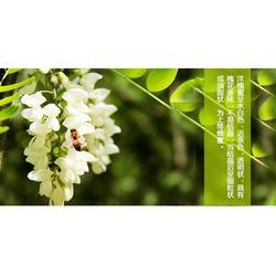槐花蜜的颜色|新阳蜂业诚招分销商|南漳槐花蜜图片