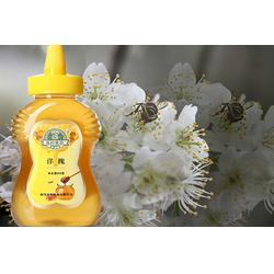 许昌椴树蜂蜜,新阳蜂业厂家直销,椴树蜂蜜图片