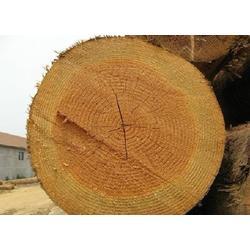 延安建筑方木、博通木材、建筑方木图片