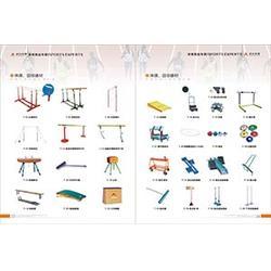 体育田径器材|卓众体育(在线咨询)|洛川田径器材图片