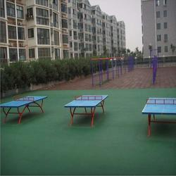 卓众(图),运动场地,汉中运动场地图片