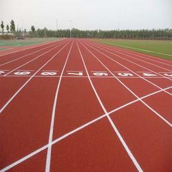 运动场尺寸、卓众(在线咨询)、天水运动场图片